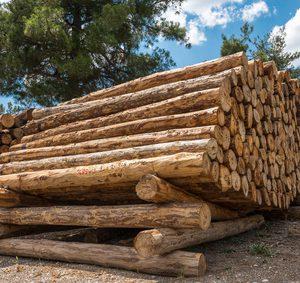 Stockage bois de chauffage cyberbois.fr