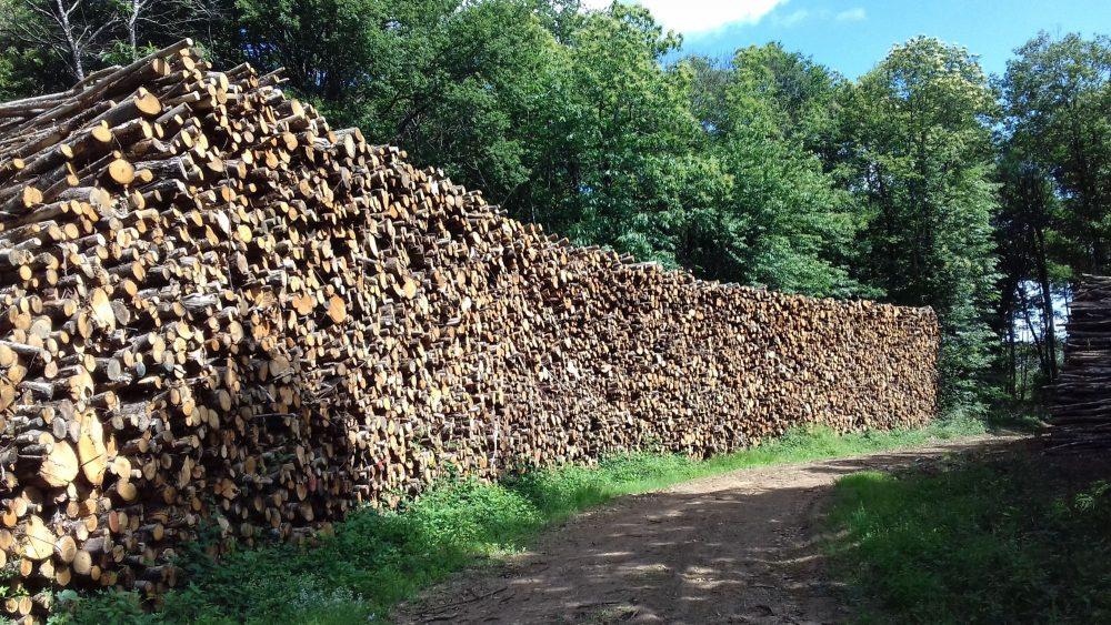 bois de chauffage Landes