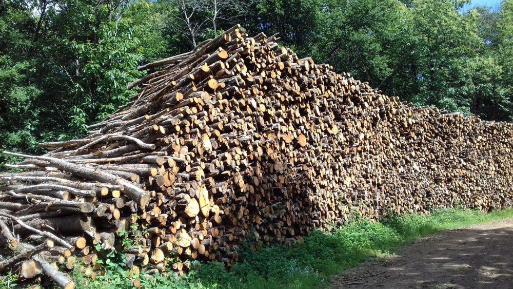 bois de chauffage Pyrénées-Atlantiques