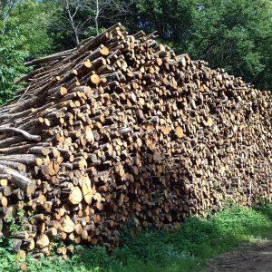 bois de chauffage Meuse