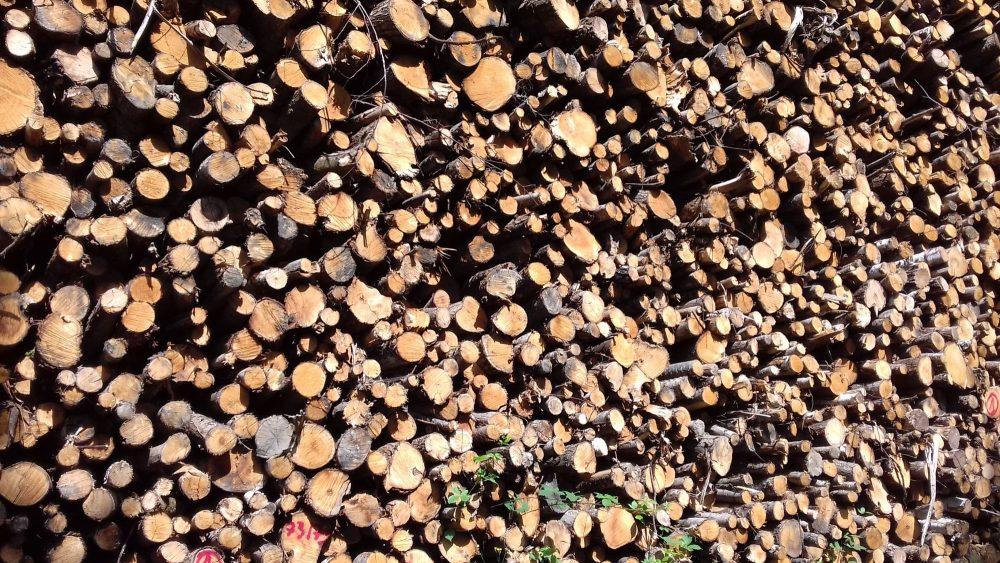 bois de chauffage Morbihan