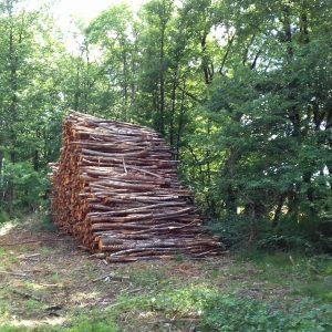 bois de chauffage Moselle