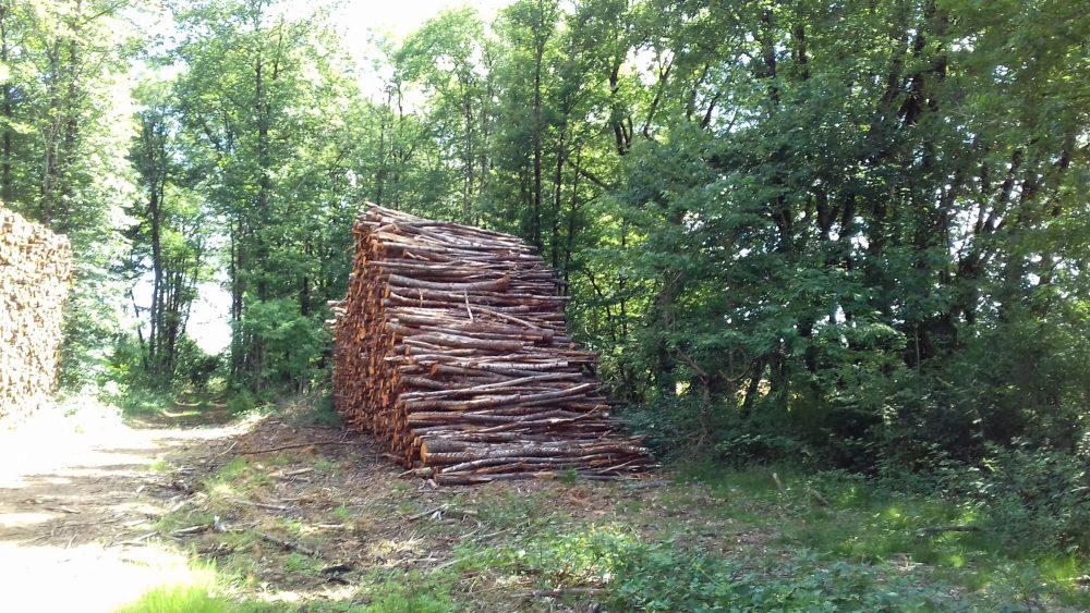 bois de chauffage Pyrénées-Orientales