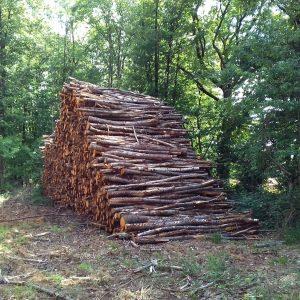 bois de chauffage Corse-du-Sud