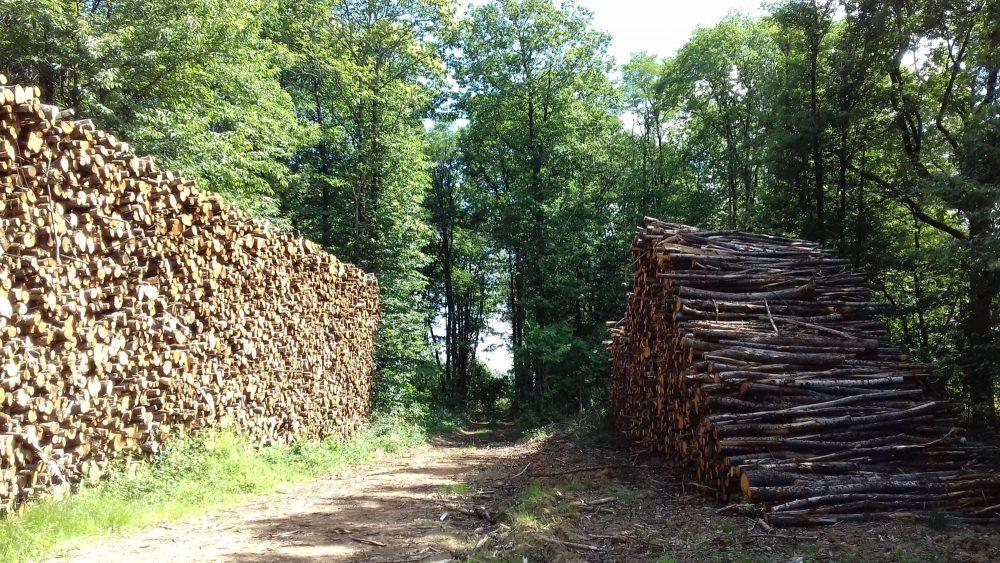 bois de chauffage Gironde