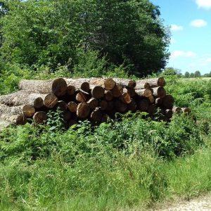 bois de chauffage Oise