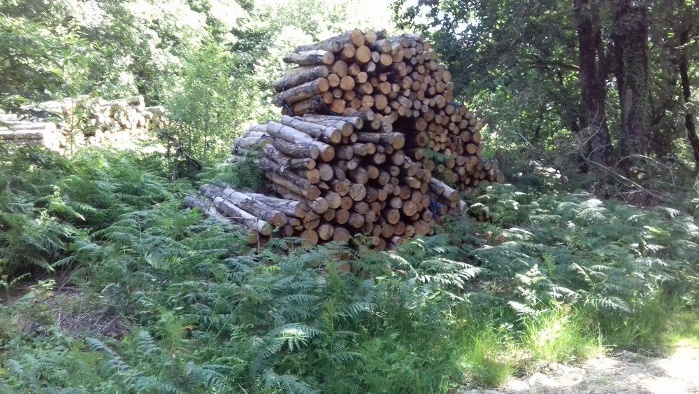 bois de chauffage Isère