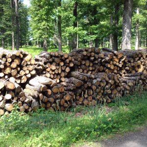bois de chauffage Haute-Marne