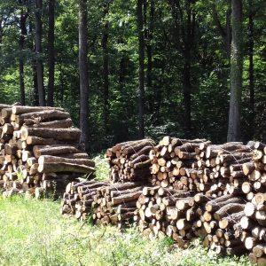 bois de chauffage Bas-Rhin