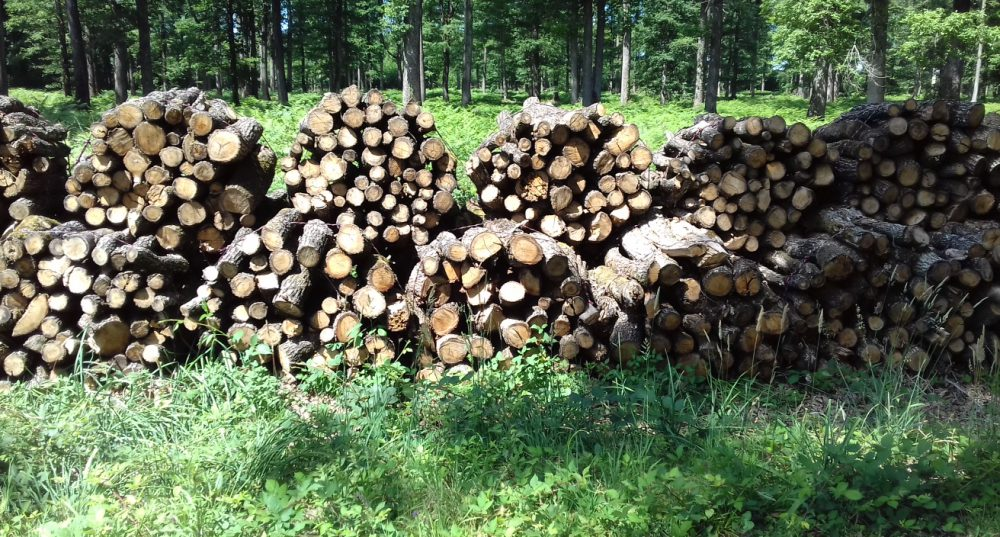 bois de chauffage Allier