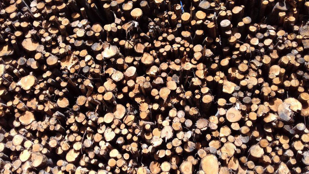 bois de chauffage Hautes-Alpes