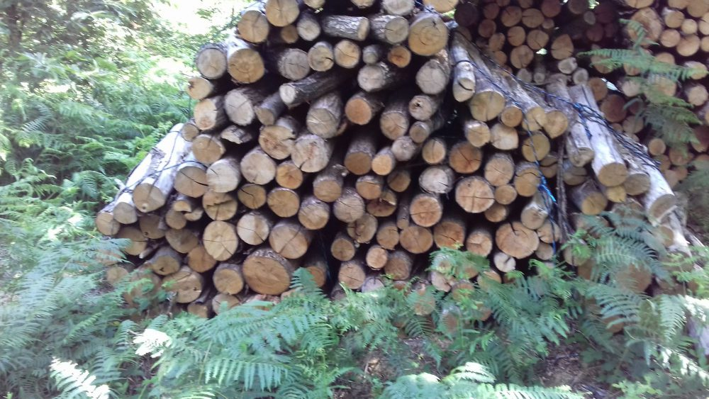 bois de chauffage Ardèche