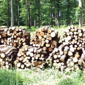 bois de chauffage Drôme