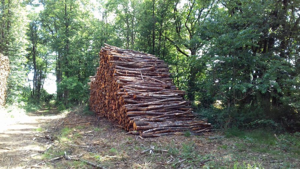 bois de chauffage Finistère