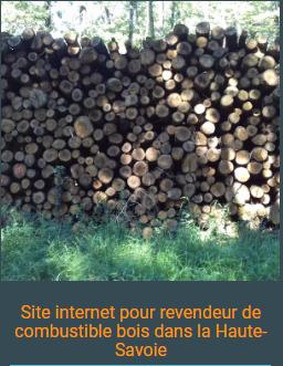 Site internet Haute-savoie