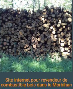 site internet Morbihan