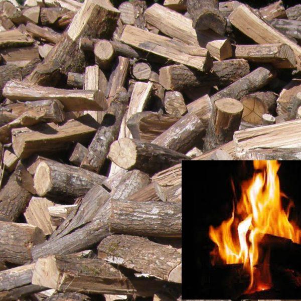 bois spécial cuisson vrac en 50cm